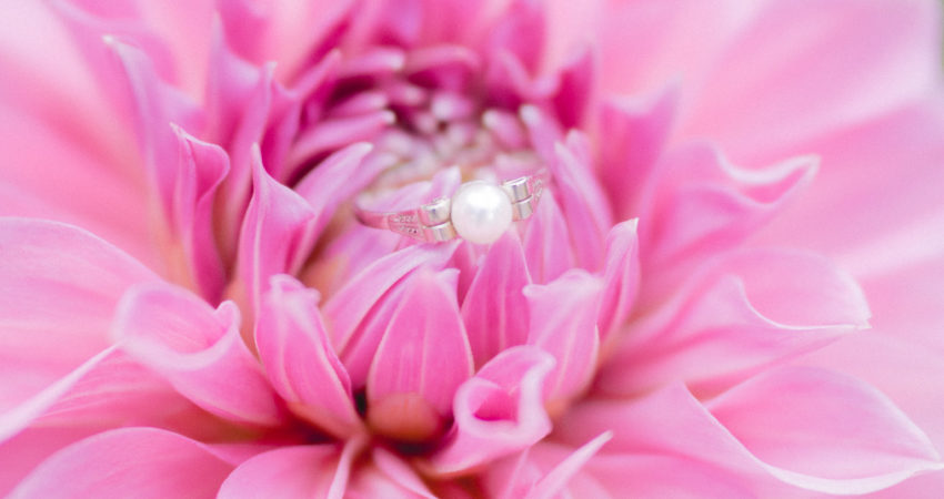photographe mariage pelves